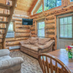 Rental Cabin 9 Living Room